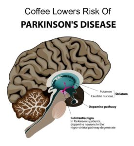 proven health benefits of coffee lowers parkinsons disease