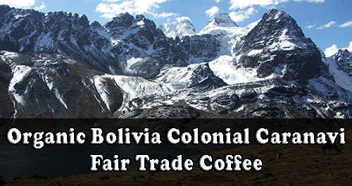 Organic Bolivia Colonial Caranavi Fair Trade Coffee