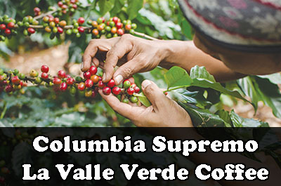 Columbia Supremo La Valle Verde Coffee
