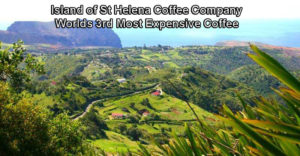Island of St Helena Coffee Company