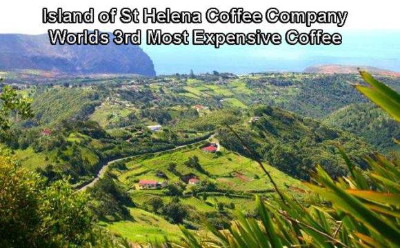 Island of St Helena Coffee Company