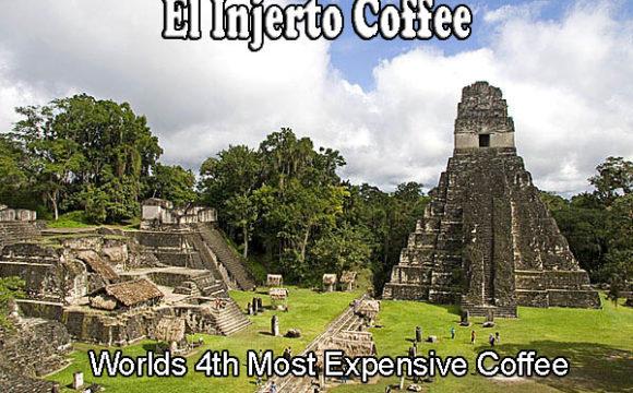 El Injerto Coffee
