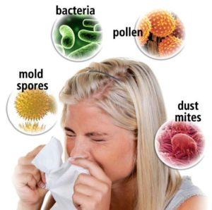 coffee effects immune system boosters allergies