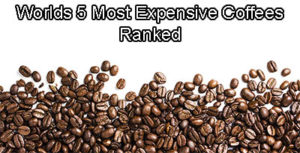 World's 5 Most Expensive Coffees