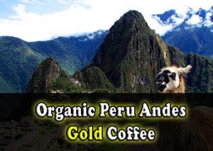 Organic Peru Andes Gold Coffee