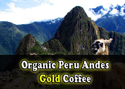 Organic Peru Andes Gold Coffee