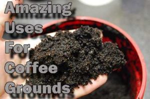 don't throw those coffee grounds away