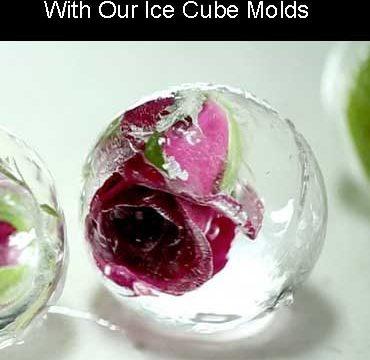 Polar Animal Series Ice Cube Molds For Sale