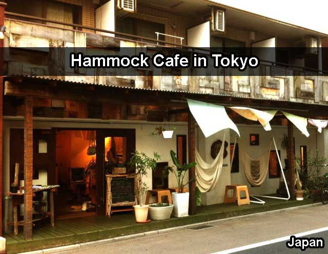 Coolest Cafe In Japan - Hammock Cafe In Tokyo