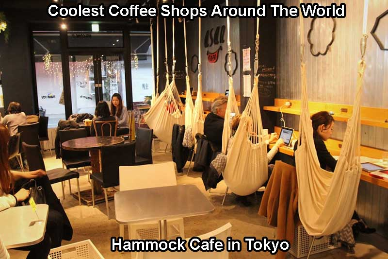 Hammock Cafe in Tokyo - Coolest Cafe Around The World