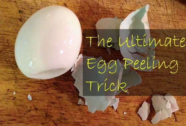 How To Boil Eggs & How To Peel Eggs like a pro