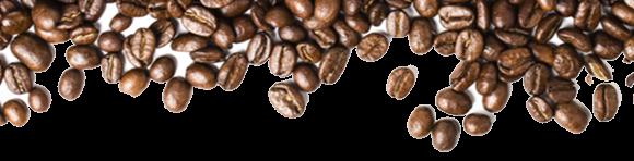 International Coffee Day Coffee Facts